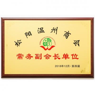松阳温州商会常务副会长单位